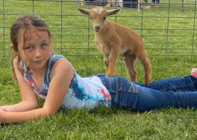 goat snuggle 1