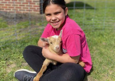 goat snuggle 10