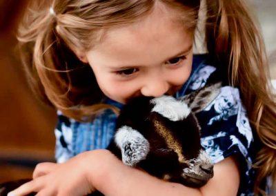 goat snuggle 5