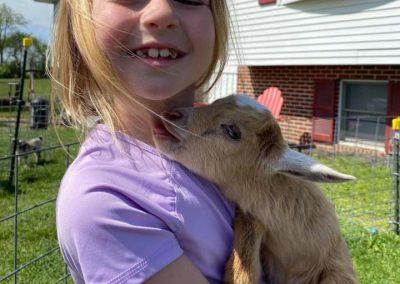 goat snuggle 6