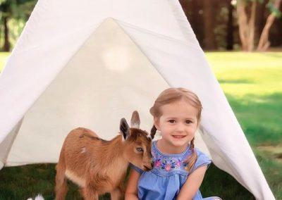 goat snuggles 14